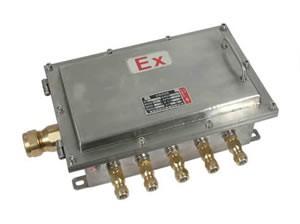 BXJ54-d不锈钢防爆接线箱